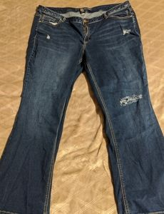 Lane Bryant Distressed Bootcut Jeans Size 24